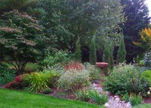 Design Considerations: Functionality of Plants in a Garden @ TBD